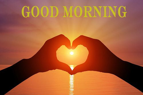 45 Latest Good Morning Love Images With Lovely English Hindi