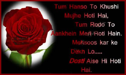 beautiful pic of friendship shayari with quotes