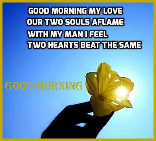 beautiful pics of Good Morning love quotes download