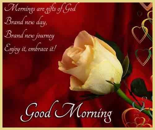 english qoute of Good Morning love pics