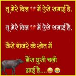 63 Hindi Shayari status photo gallery Funny image download for Whatsapp