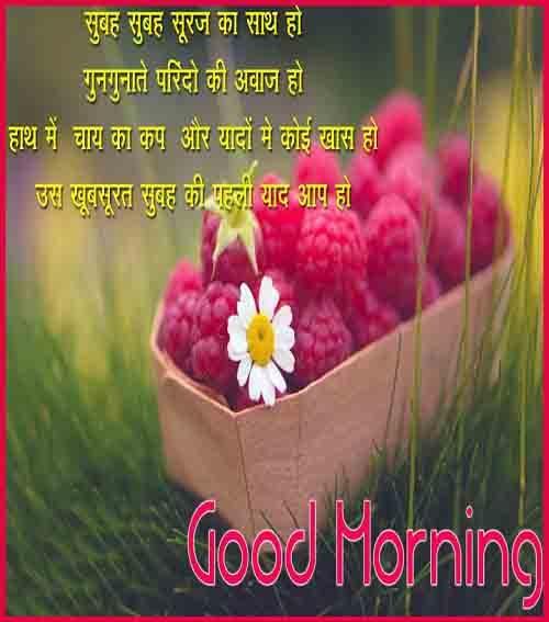 whatsaap post photo of good morning hindi download