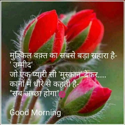 हिंदी Hindi good morning HD pictures, Messages for ...